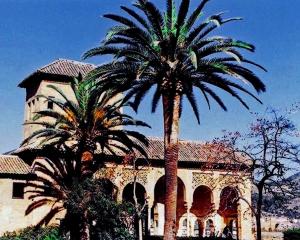 Alhambra Palms2