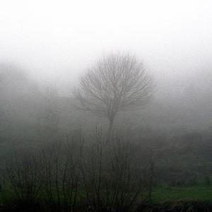 Spain fog2